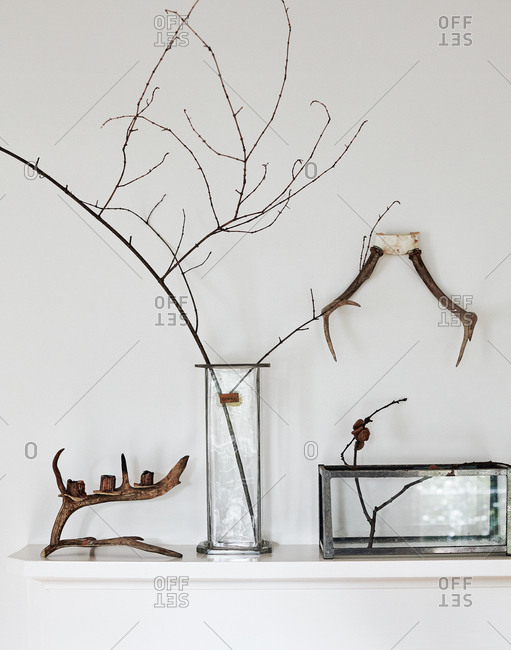 Animal antlers and tree branches on a mantle