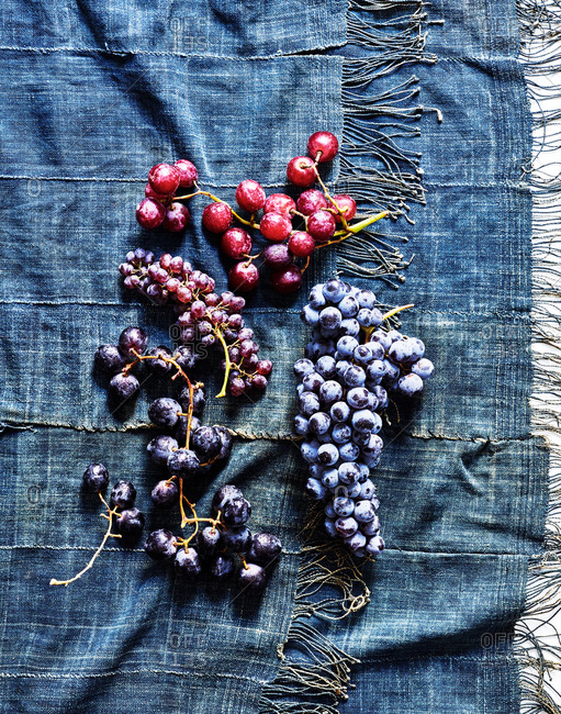 Variety of grapes on blue background