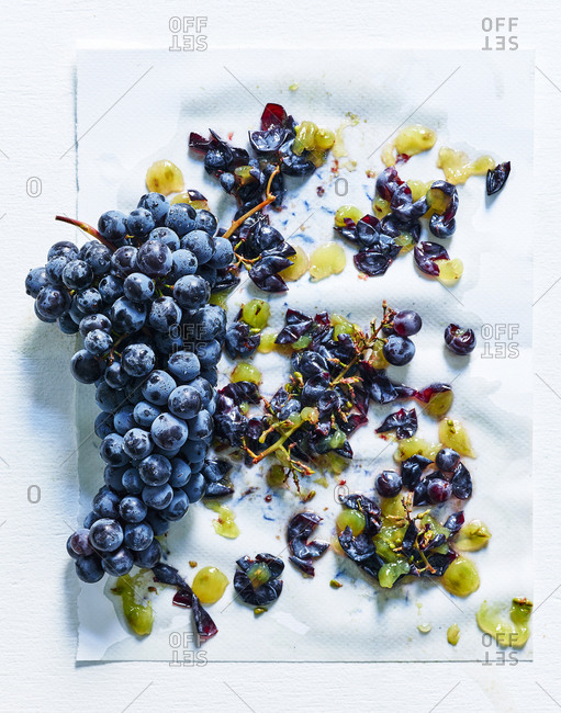 Black grapes squashed on white background