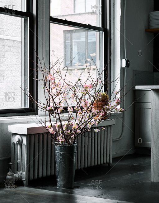 Flower blossoms on branches in tin by window