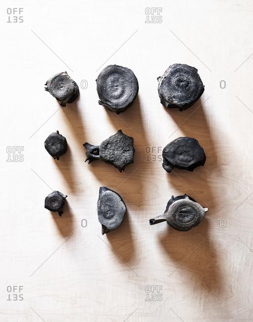 Petrified whale bones