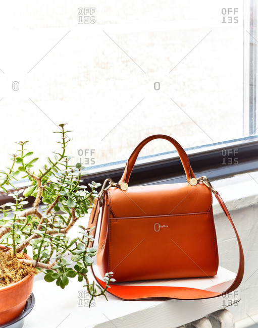 July 5, 2016: Max Mara purse