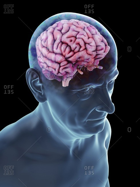 Illustration of an old man's brain.