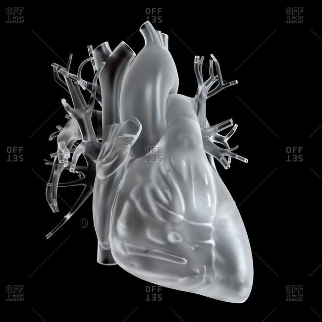 Illustration of glass heart.