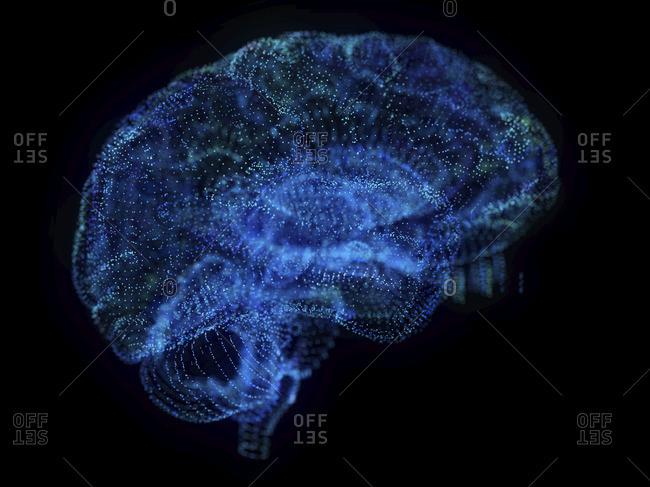 Illustration of an abstract plexus brain.
