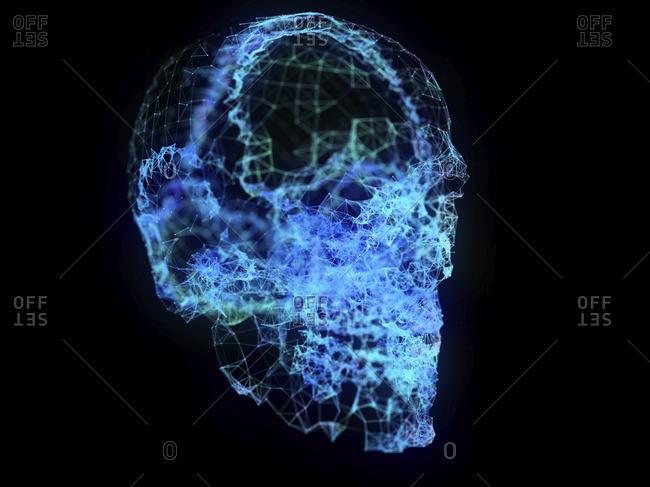 3d rendered illustration of a plexus skull