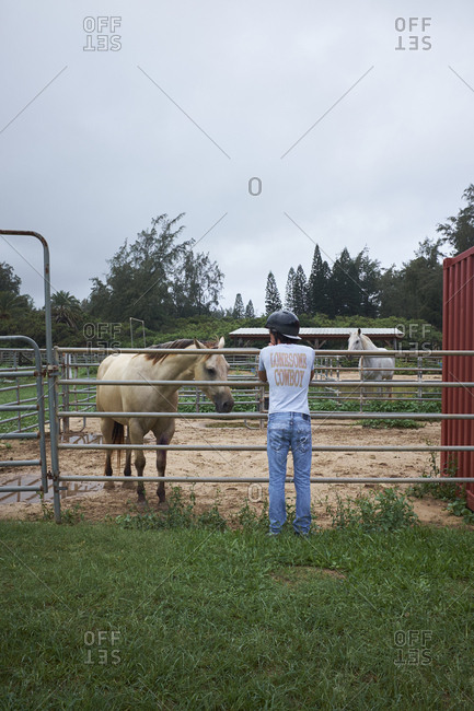 Hawaii, USA - September 28, 2018: Rear view of man watching horse on a farm