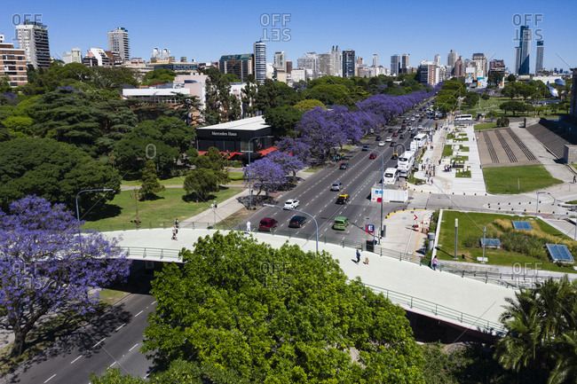 Buenos Aires, Argentina - November 18, 2018: Colorful trees line a street in Buenos Aires