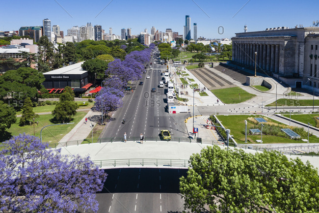 Buenos Aires, Argentina - November 18, 2018: Lavender colored trees line a street in Buenos Aires