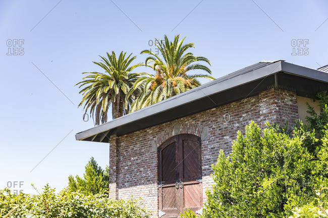 Palm trees above brick building in California