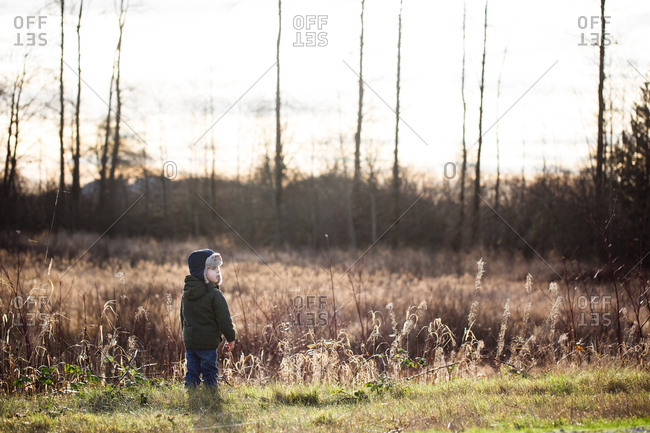 Toddler boy walking in a field at sunset