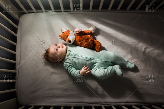 Baby in crib with stuffed fox