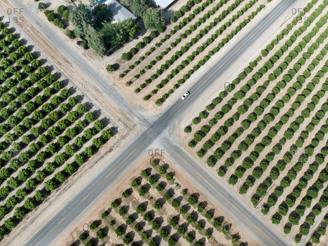 Aerial view of an intersection of country roads through orange groves in central California