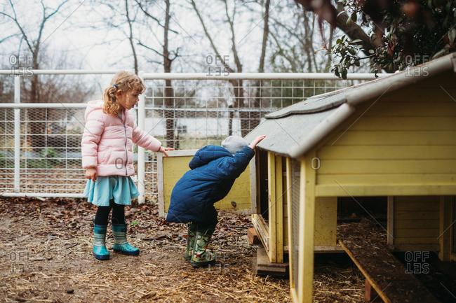 Two kids peeking into a chicken coup