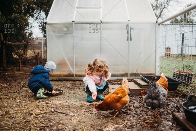 Two kids feeding chickens