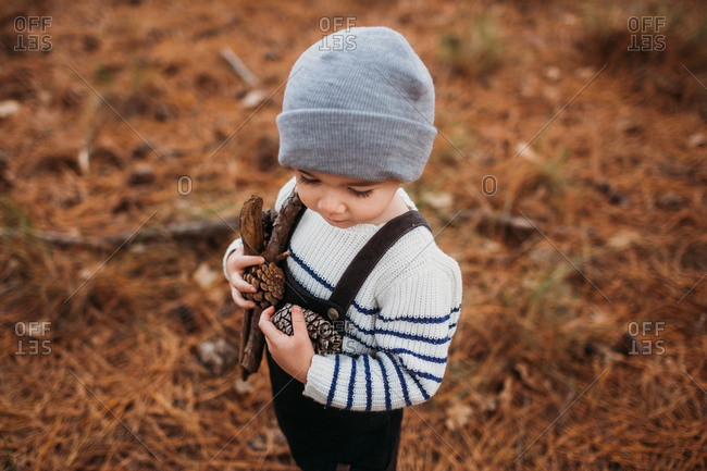 Toddler boy holding pinecones and sticks