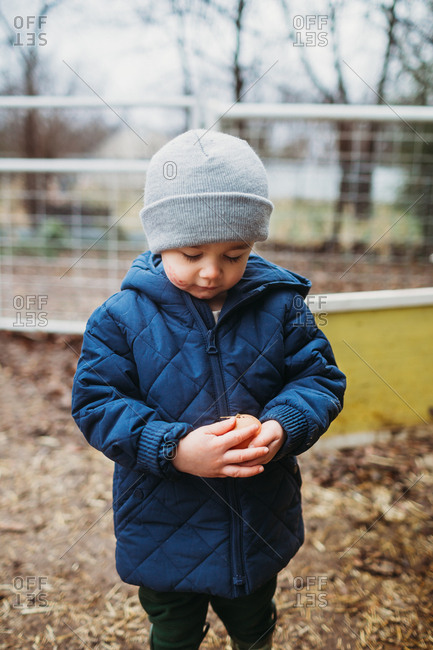 Little boy holding a fresh egg from chicken coop