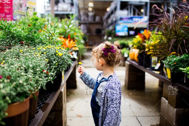 Little girl picking a flower in a garden center