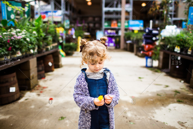 Little girl holding a picked flower in a garden center
