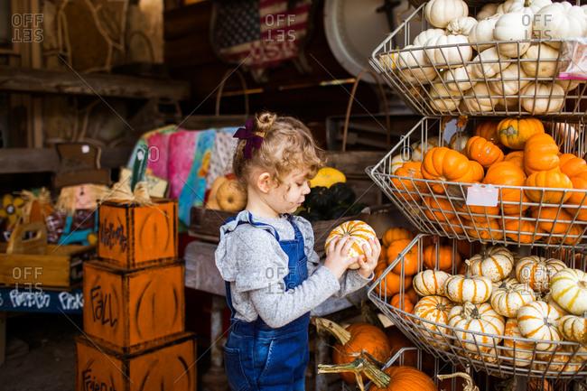 Little girl choosing a small pumpkin from a bin at a farmer's market