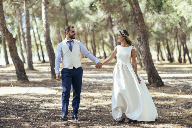 Happy bridal couple walking hand in hand in pine forest