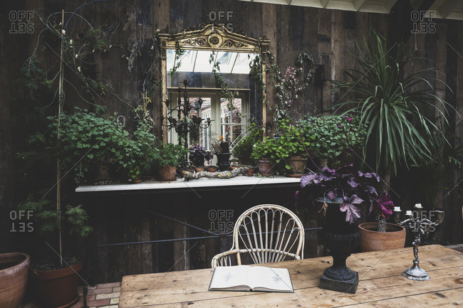 Garden room with wooden walls, rustic wooden table and antique mirror with ornate gilded frame, selection of indoor plants on shelf.