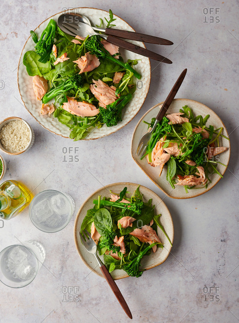 Grilled flaked salmon salad