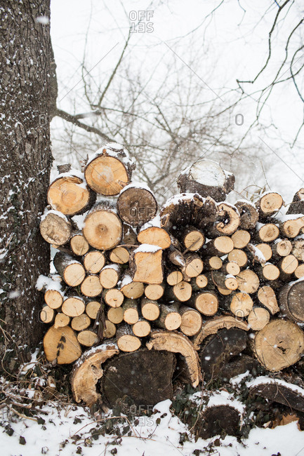 Cut wood stacked in a pile surrounded by snow