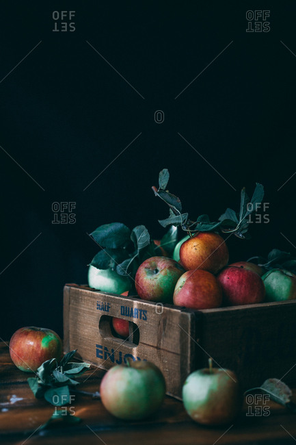 Moody fall apples piled in a box