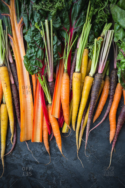 Colorful carrots and Swiss chard on dark background