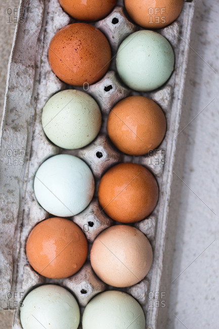 Close-up of colorful eggs in carton