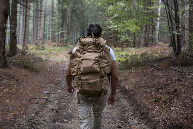 Bulgaria- Balkan Mountains- hiker with backpack on hiking trail- rear view