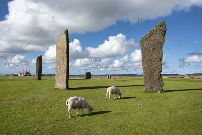 Great Britain- Scotland- Orkney- Mainland- Neolithic stone circle