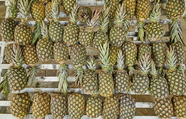 Brazil- pineapples on a market