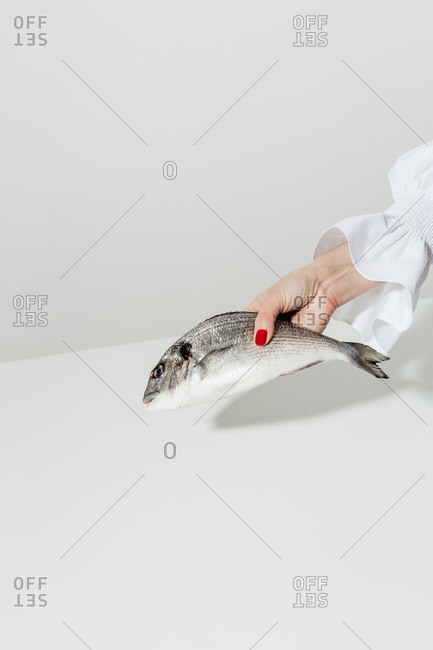 Fashionable woman with manicure holding a dead fish
