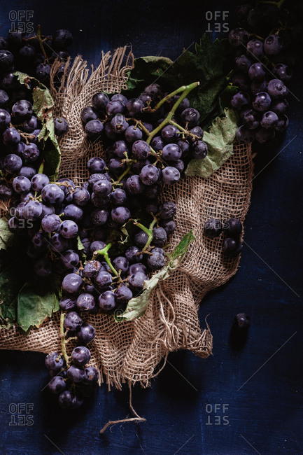 Grapes in dark moody set