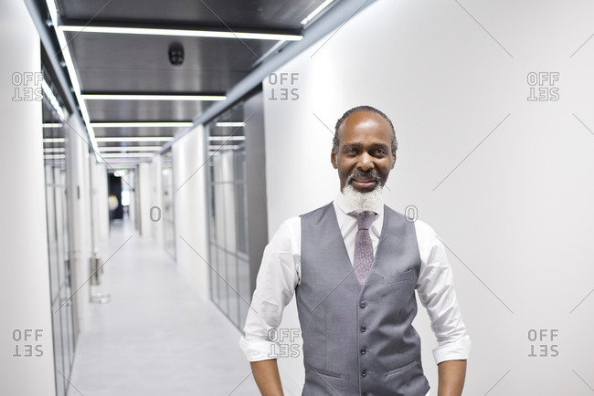 Portrait of a smiling businessman in a modern office