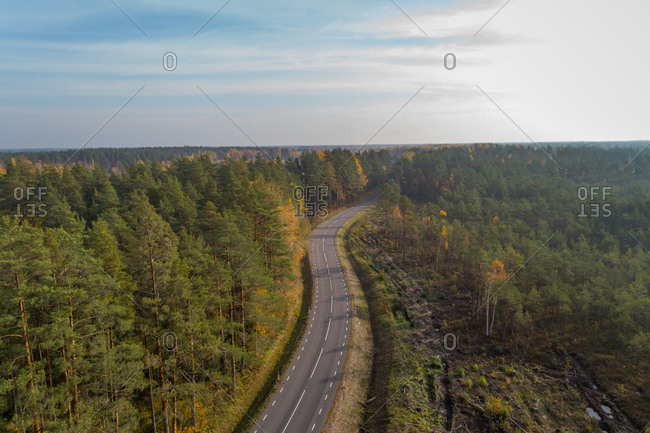 Aerial view of curve asphalt road beethen forest, Estonia.