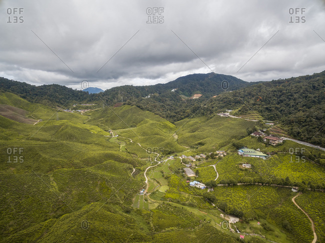 Aerial view of cultivation field on mountainous region, Malaysia.
