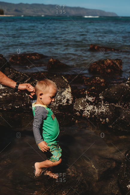 Toddler boy walking in shallow ocean water holding dad's hand