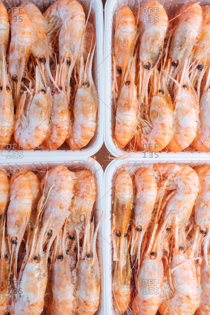 Shrimp for sale in a fish market