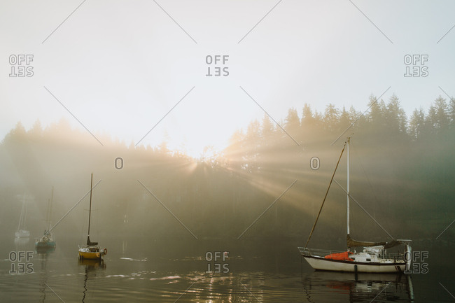 Sun rising over trees and lake with moored sailboats