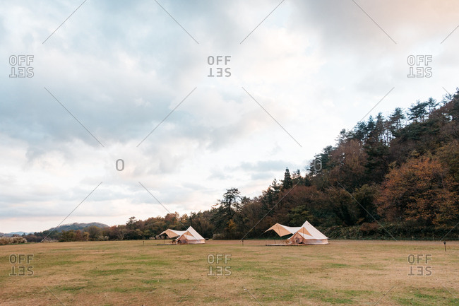 Tents pitched in a field adjacent to a forested area in the Shimane prefecture, Japan