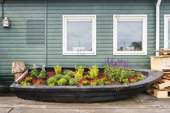 Small boat garden in front of green wall