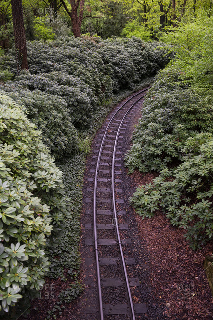 Railway curves through the quiet forest