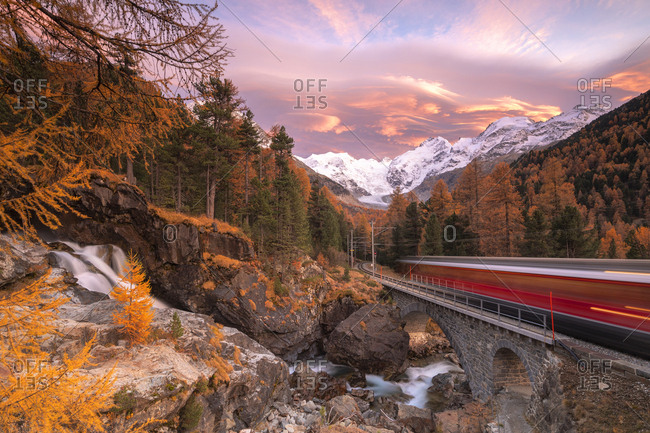 October 28, 2016: Bernina Express train in transit along colorful woods in autumn, Morteratsch, Engadine, canton of Graubunden, Switzerland, Europe