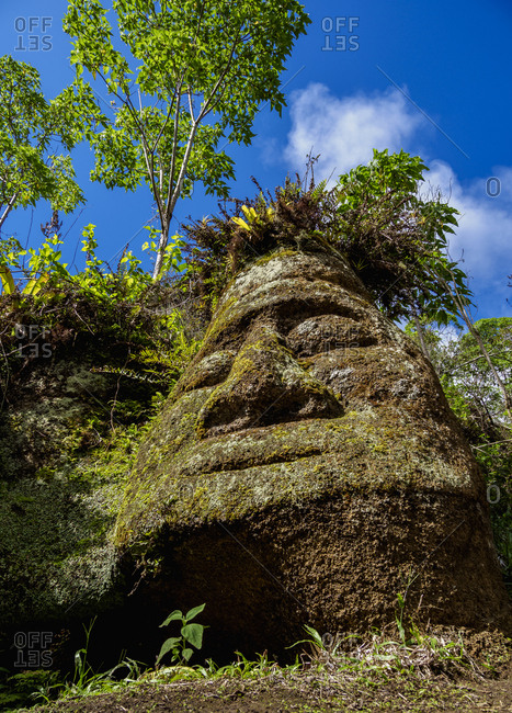 Face Sculpture in Tuff Rock, Asilo de la Paz, Highlands of Floreana (Charles) Island, Galapagos, UNESCO World Heritage Site, Ecuador, South America