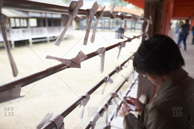 Miyajama Island, Japan- April 4, 2017: A Japanese woman ties an Omikuji onto the railings of the Itsukushima Shrine. Omikuji is a fortune telling paper strip found at shrines. If the fortune is unfavourable then the receiver can tie it to the railings to wish for better luck.
