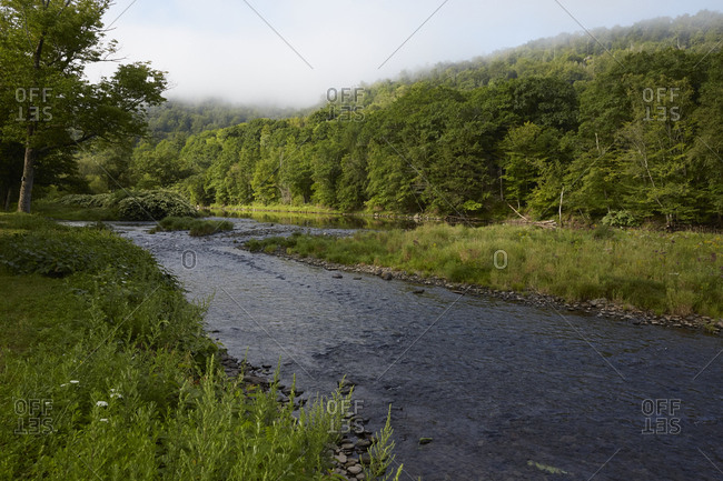 River in the Catskill Mountains in New York