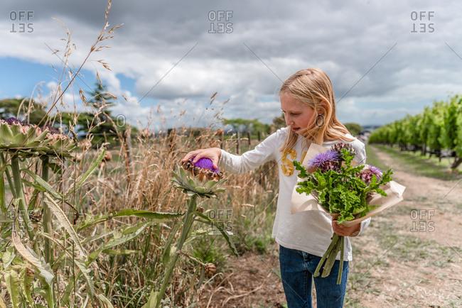 Young girl picking artichoke for a bouquet
